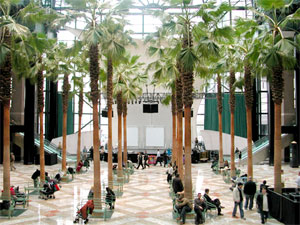 view the panoramas - Winter Garden Nyc